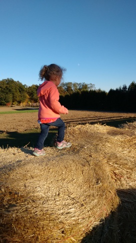 Getting pumpkins and playing at Parlee