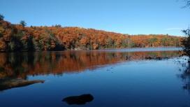 Heald Pond