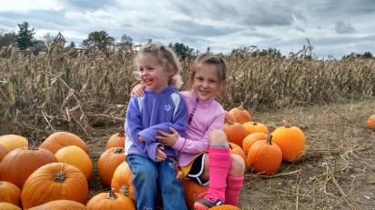 Getting a pumpkin
